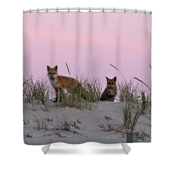 Dune Foxes Shower Curtain