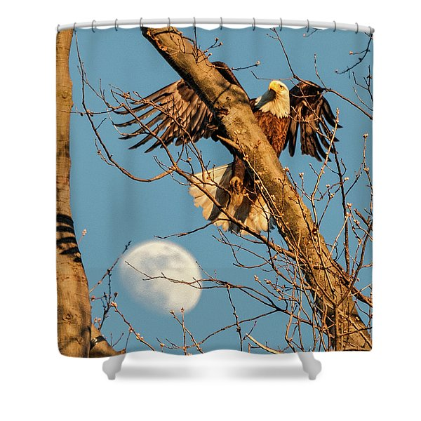 Eagle And Moon  Shower Curtain