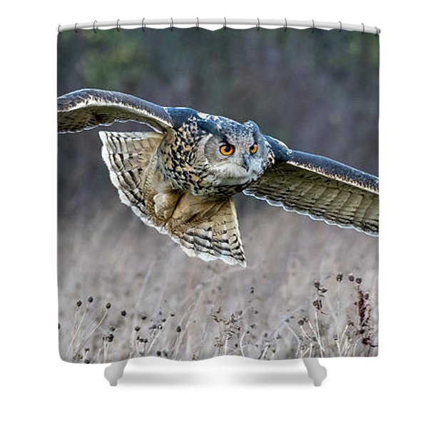 Eagle Owl Gliding Shower Curtain