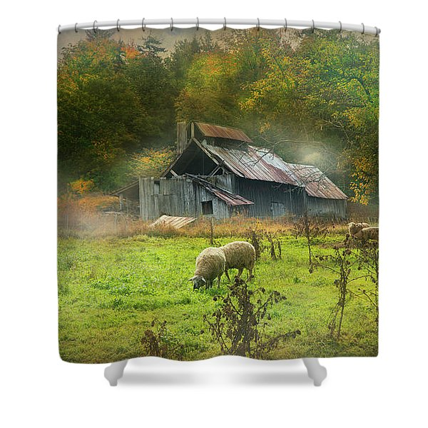 Early Morning Grazing Shower Curtain