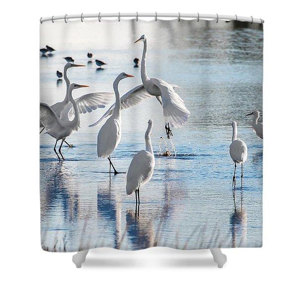 Egret Ballet 1400 Shower Curtain