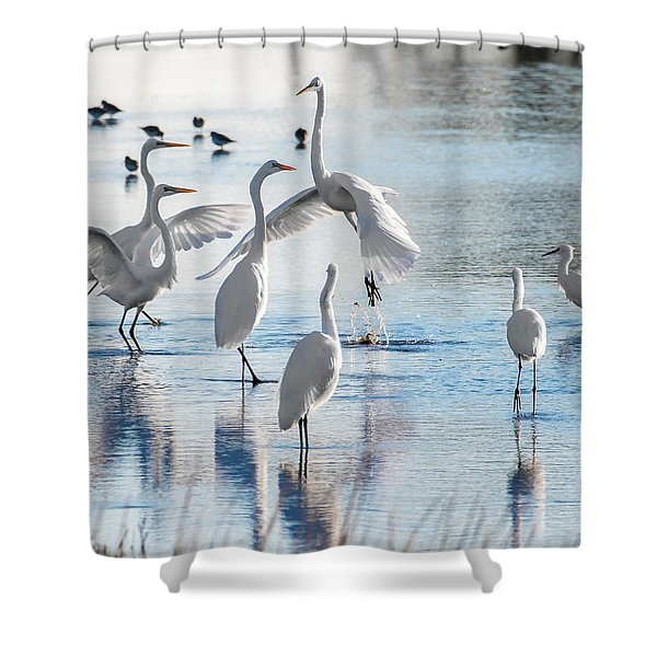 Egret Ballet 1400 Shower Curtain