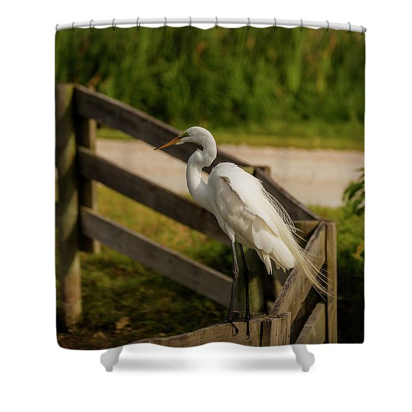 On The Fence Shower Curtain