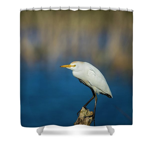 Egret On A Stick Shower Curtain