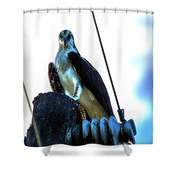 Electrifying Pose  Shower Curtain
