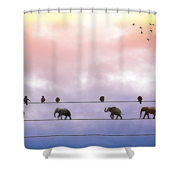 Elephants On The Wires Shower Curtain