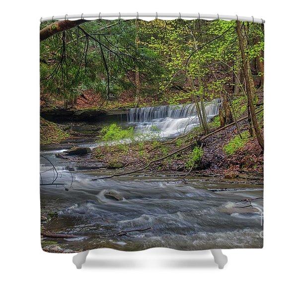 Emery Park Shower Curtain