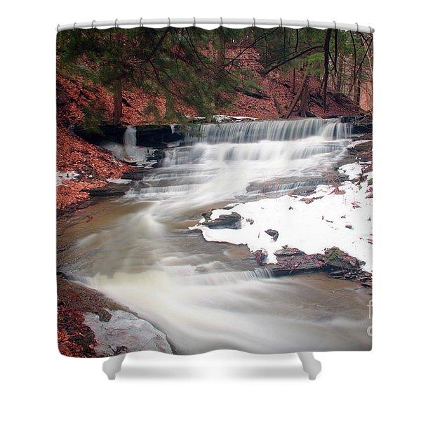 Emery Park South Wales Ny Shower Curtain