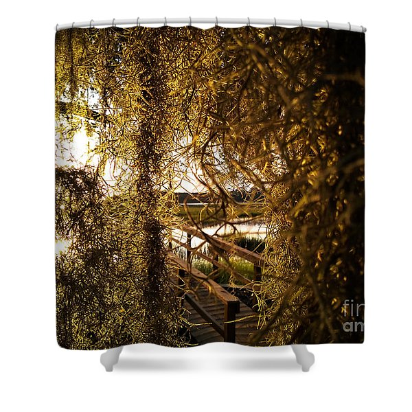 Entry Shower Curtain