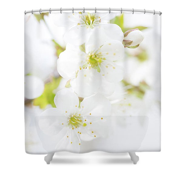 Shower Curtain featuring the photograph Ethereal Blossoms by Emily Johnson