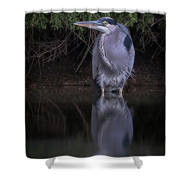 Evening Stalk Shower Curtain