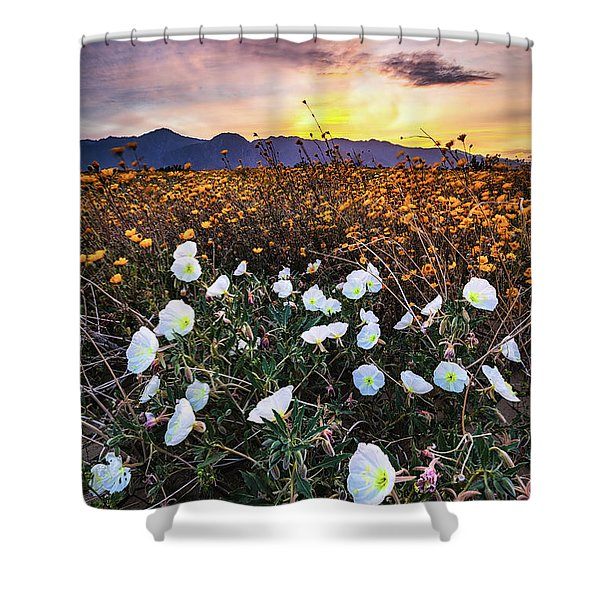 Evening With Primroses Shower Curtain