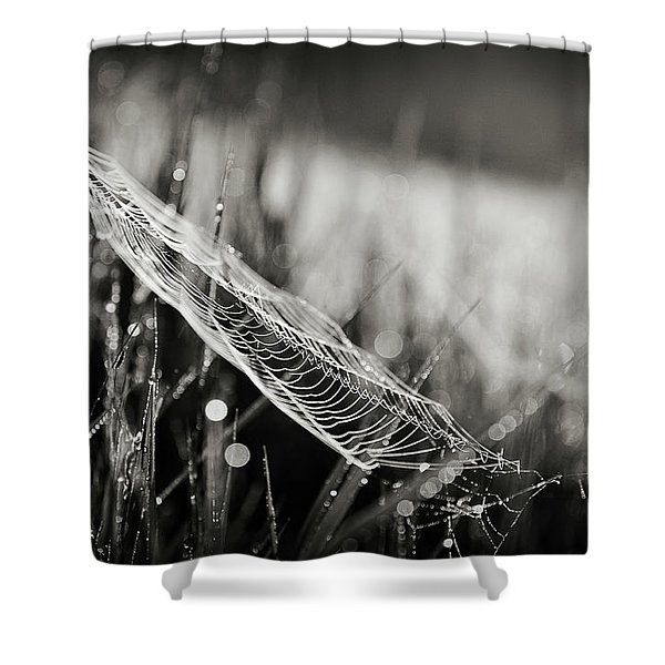 Everything Shower Curtain