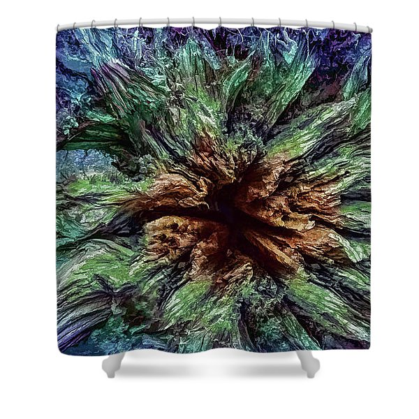 Expansion Shower Curtain