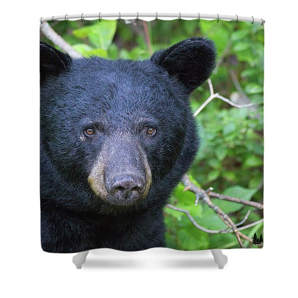 Expressive Eyes Shower Curtain