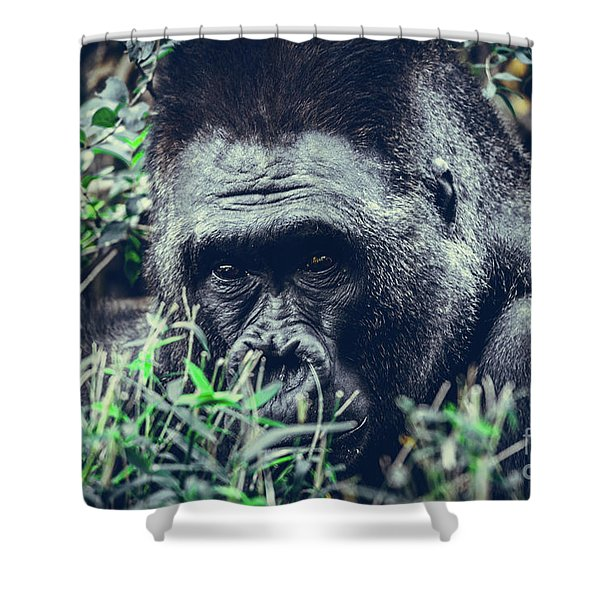 Eyes Speak Shower Curtain