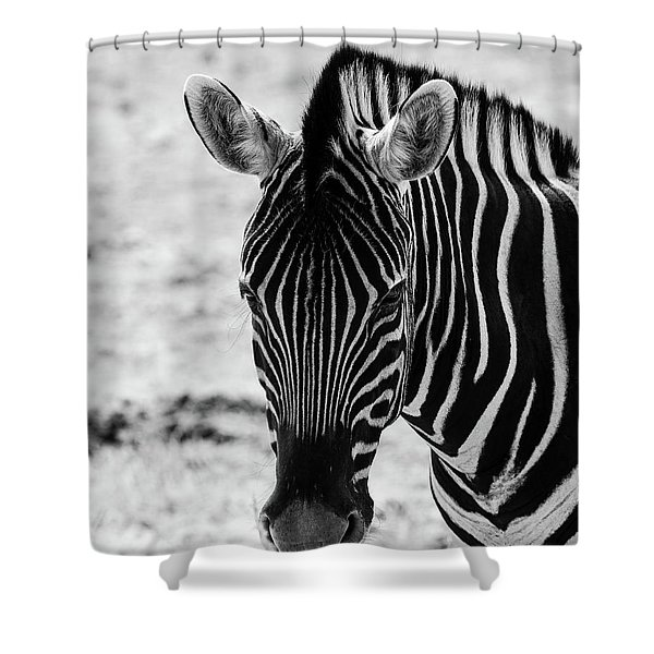 Face Of Zebra Shower Curtain