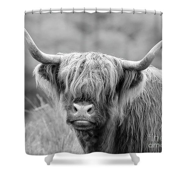 Face-to-face With A Highland Cow - Monochrome Shower Curtain