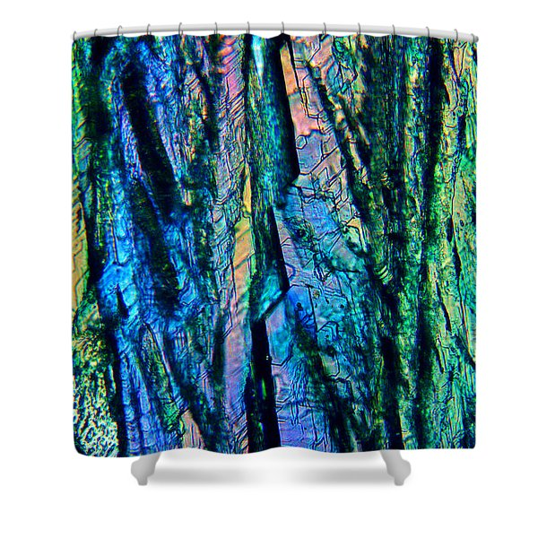 Fading Splendor Shower Curtain