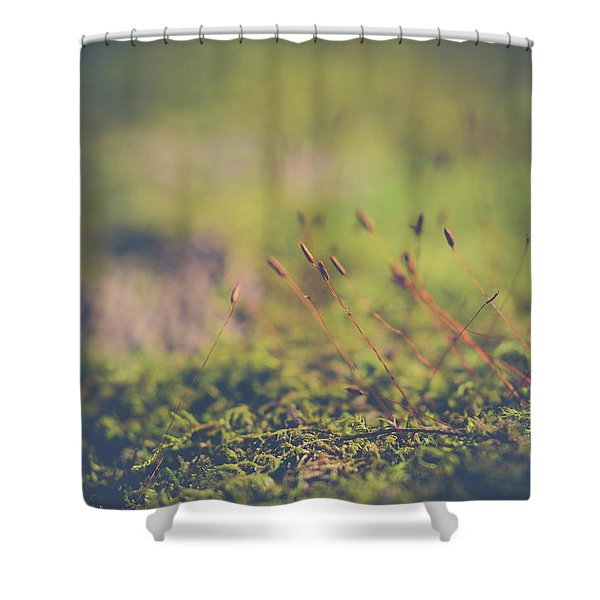Fairy Hunt Shower Curtain