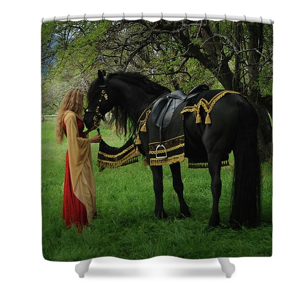 Fairytale  Shower Curtain
