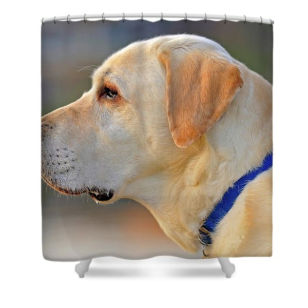 Shower Curtain featuring the photograph Faithful by Tom Gresham