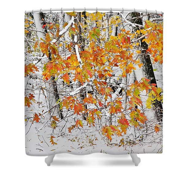 Fall And Snow Shower Curtain