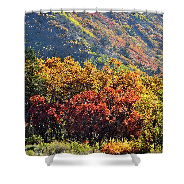 Fall Colors Along Avalanche Creek Road Shower Curtain