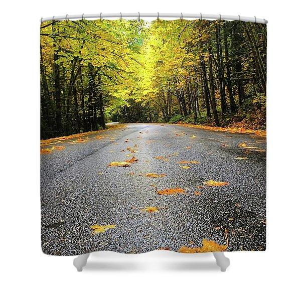 Fall Drive Shower Curtain