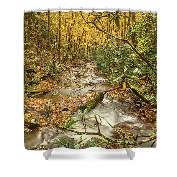 Shower Curtain featuring the photograph Fall Mountain River by Meta Gatschenberger