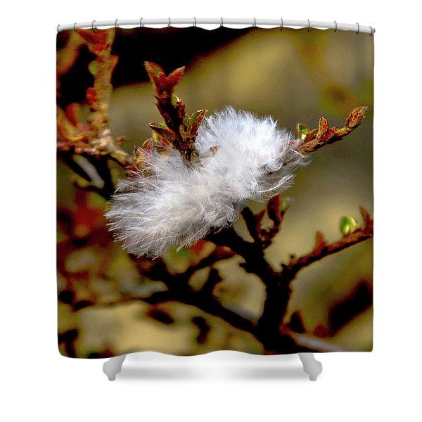 Fallen Feather Shower Curtain