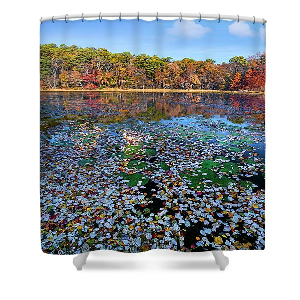 Fallen Leaves On Lake, Daingerfield Shower Curtain