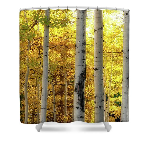 Fall's Visitation Shower Curtain