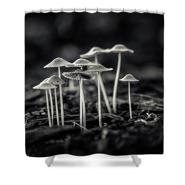 Fanciful Fungus-2 Shower Curtain