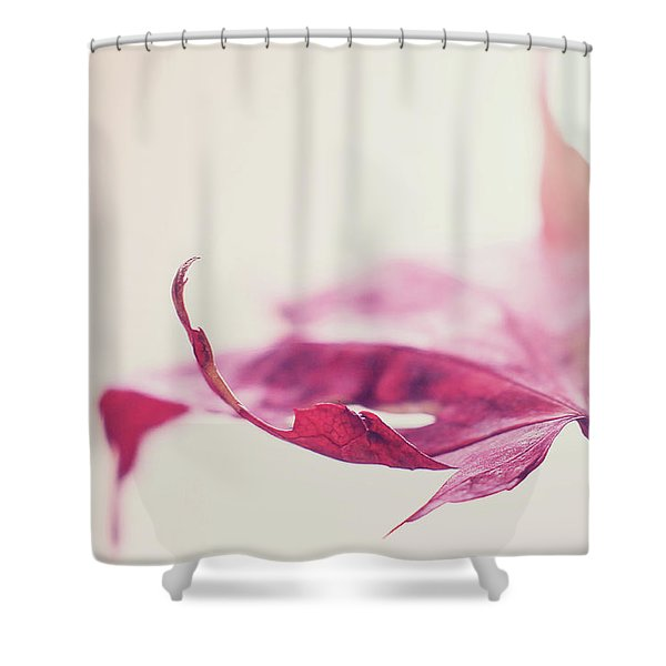 Fancy Flight Shower Curtain