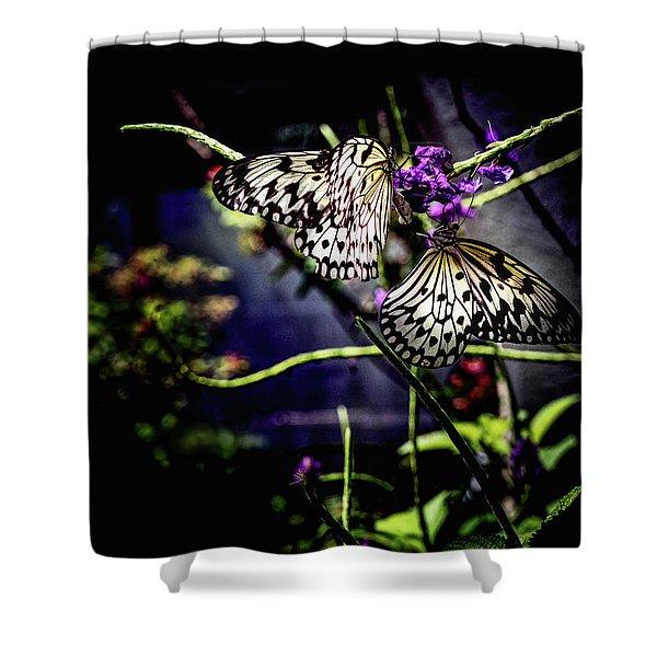 Farfalla Shower Curtain