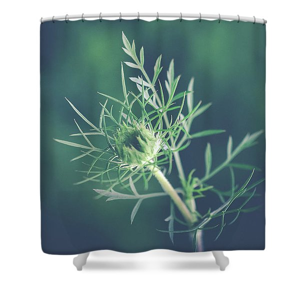 Fascinate Shower Curtain