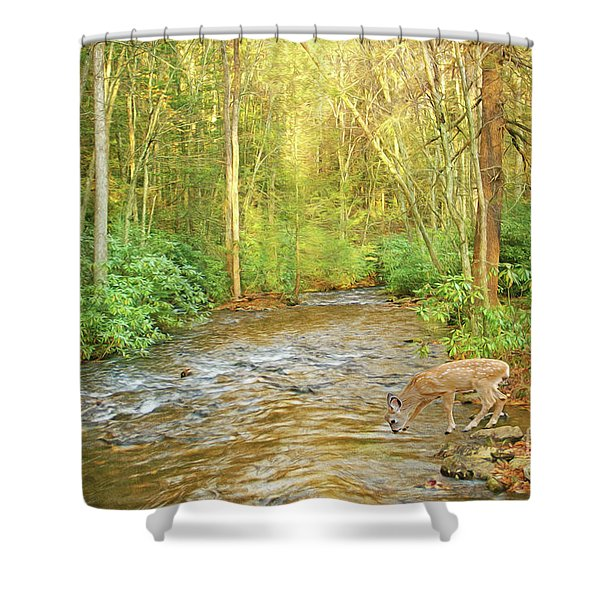 Fawn Drinking From Stream Shower Curtain