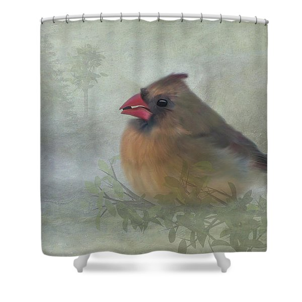 Female Cardinal With Seed Shower Curtain