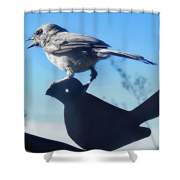 Caption This Shower Curtain
