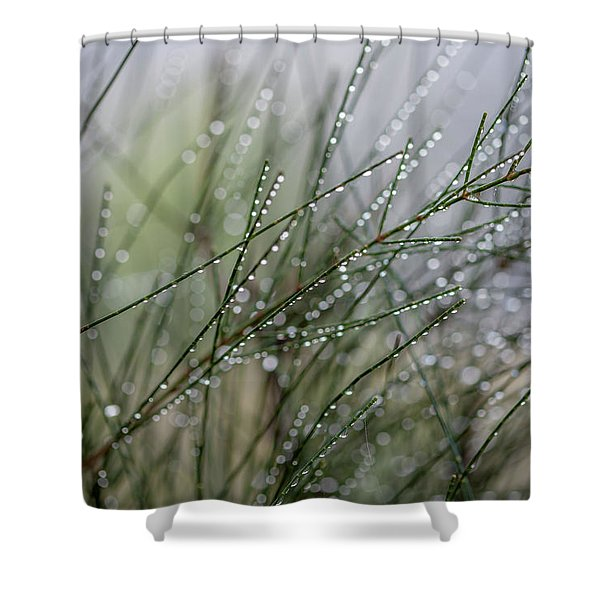 Fields Of Dew Shower Curtain