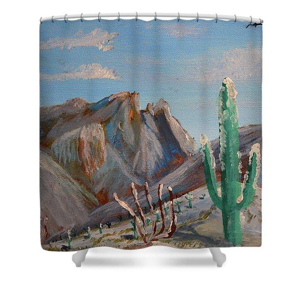 Finger Rock Winter Shower Curtain