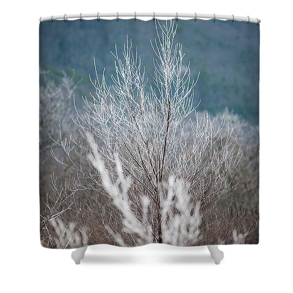 Fingers Of Hoarfrost Shower Curtain