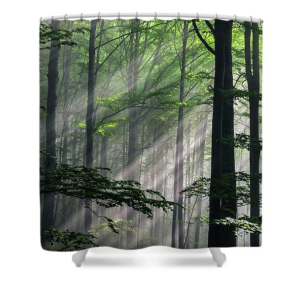 Fleeting Beams Shower Curtain