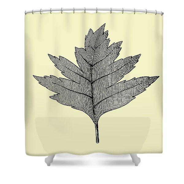 Floating Leaf I Shower Curtain
