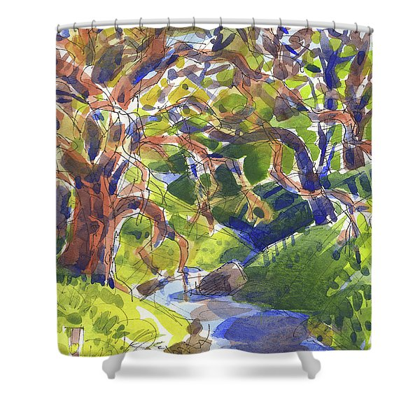 Flooded Trail Shower Curtain