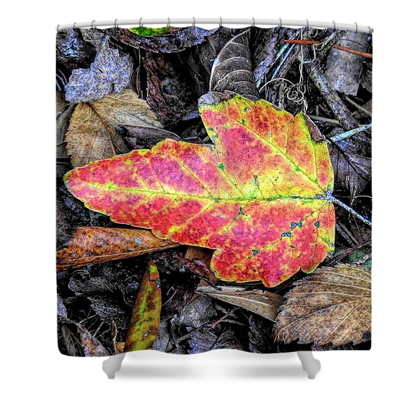 Florida Foliage Shower Curtain