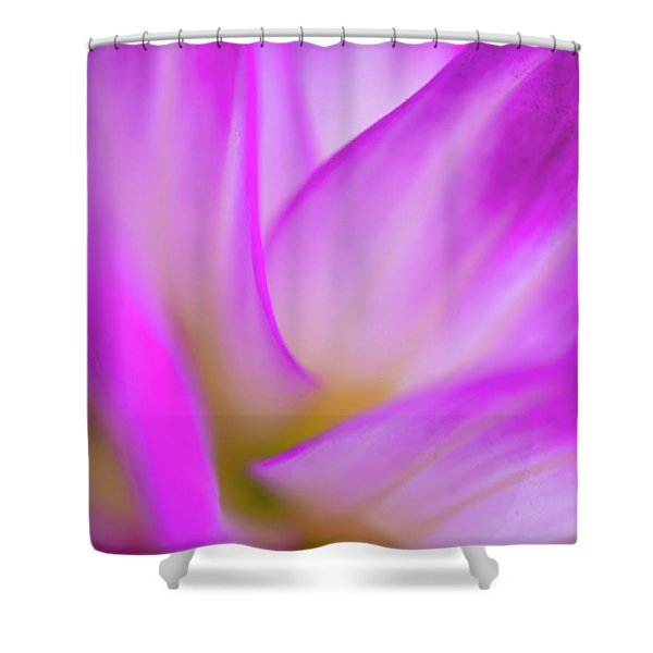 Flower Close Up Shower Curtain