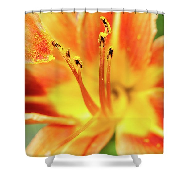 Flower Pollen Shower Curtain