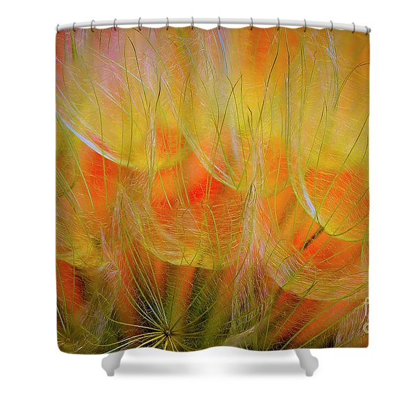 Flowering Over Shower Curtain